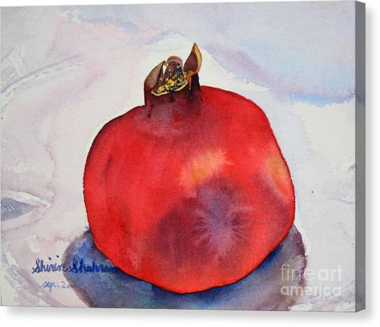 Pomogranate Punica Granatum Canvas Print