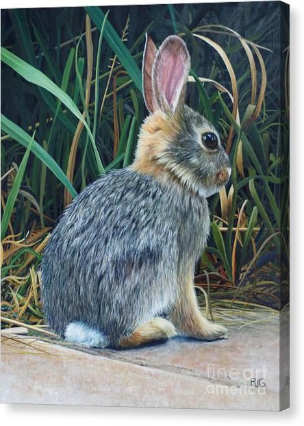 Pompey's Pillar Rabbit Canvas Print