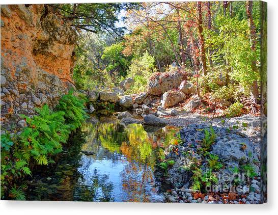 Pond At Lost Maples Canvas Print