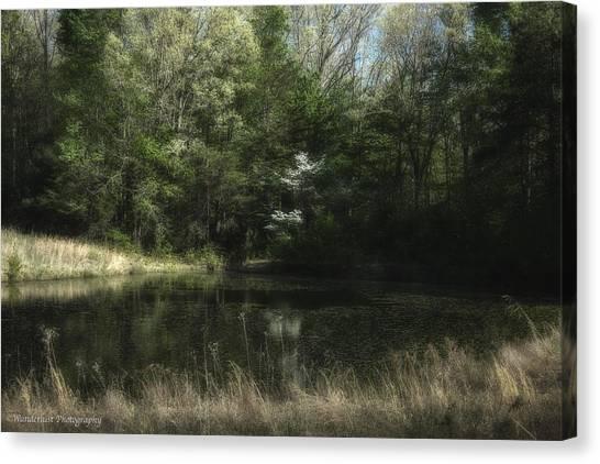 Big South Canvas Print - Pond Of Dreams by Paul Herrmann