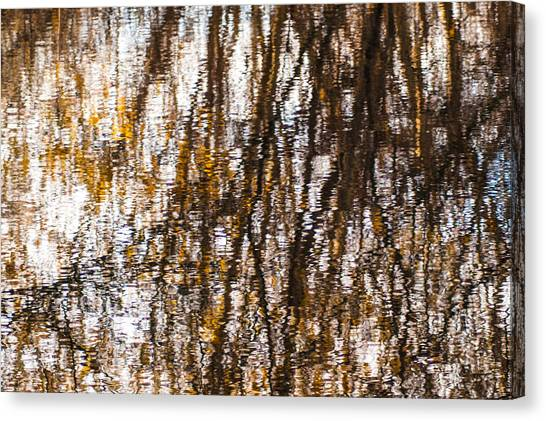 Pond Reflections #6 Canvas Print