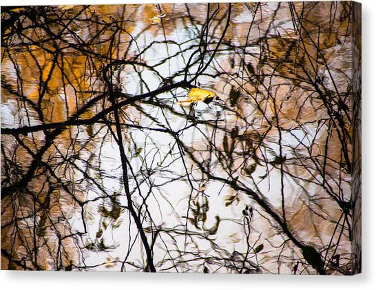 Pond Reflections #7 Canvas Print
