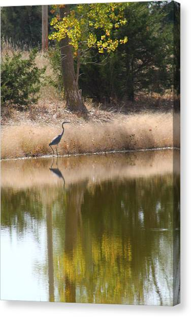 Pond Side Canvas Print