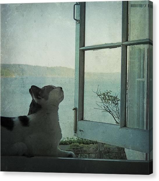 Pondering Canvas Print