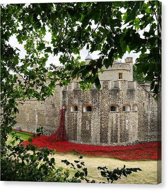 Tower Of London Canvas Print - Tower Poppies by Helle Huxley