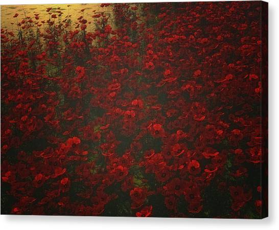 Poppies In The Rain Canvas Print