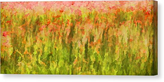 Poppies Of Tuscany IIi Canvas Print