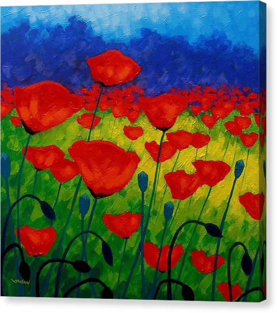 Iphone Case Canvas Print - Poppy Corner II by John  Nolan