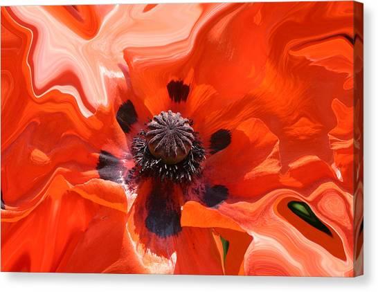 Poppy Nest Canvas Print