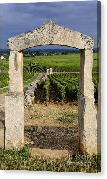 Portal Canvas Print - Portal  Of Vineyard.burgundy. France by Bernard Jaubert