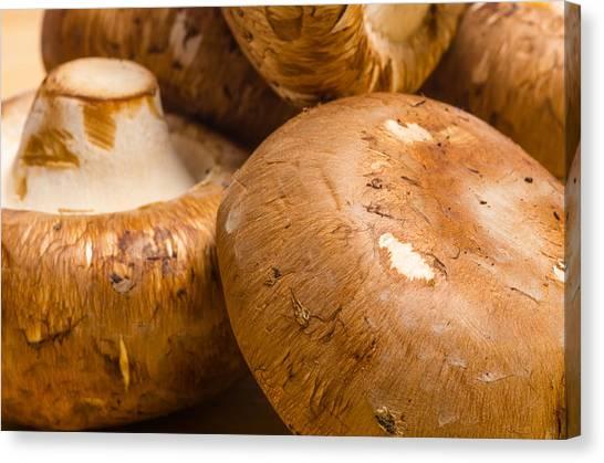 Portobello Mushroom Canvas Print - Portobello Mushrooms  by John Trax