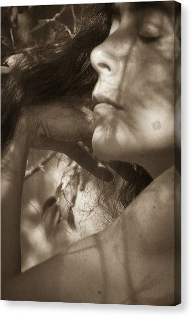 Canvas Print featuring the photograph Portrait 3 by Catherine Sobredo