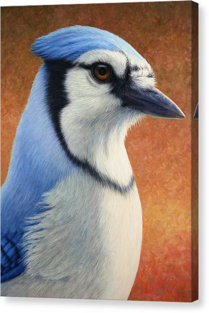 Perching Birds Canvas Print - Portrait Of A Bluejay by James W Johnson