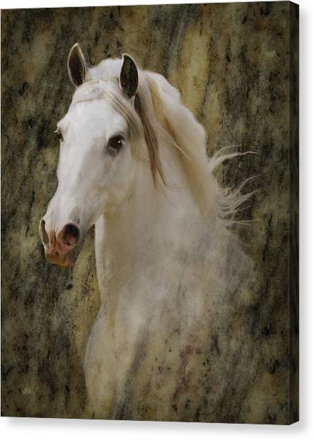 Canvas Print featuring the photograph Portrait Of A Horse God by Melinda Hughes-Berland