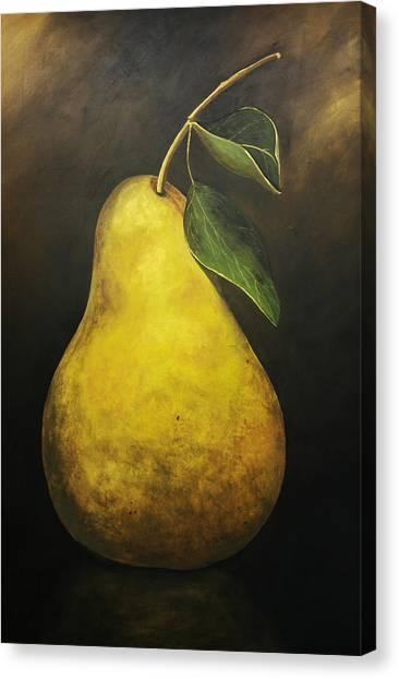 Portrait Of A Pear Canvas Print by Terri  Meyer
