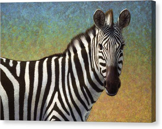 Zebras Canvas Print - Portrait Of A Zebra by James W Johnson