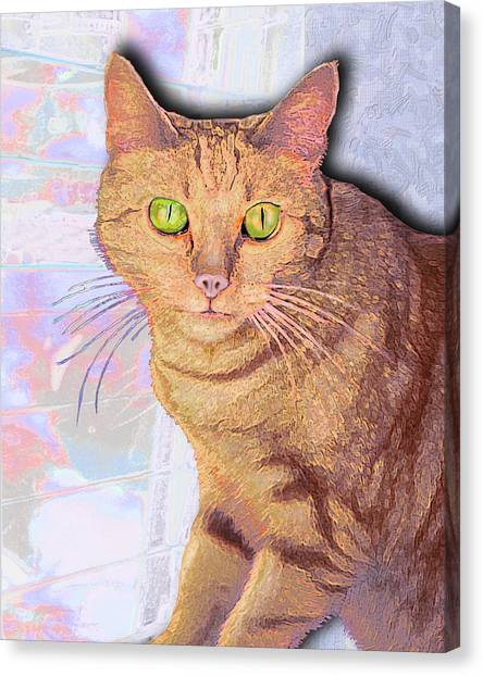 Portrait Of Buster I Canvas Print