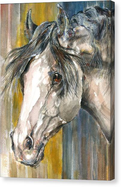 Portrait Of Gray Canvas Print by Mary Armstrong