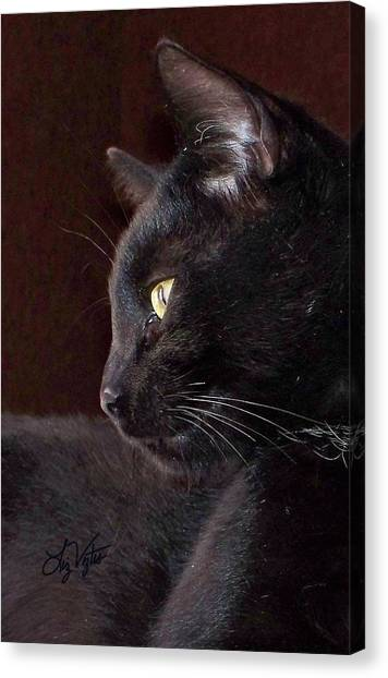 Portrait Of My Boy Charlie Canvas Print
