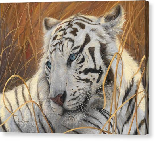 Bengals Canvas Print - Portrait White Tiger 1 by Lucie Bilodeau