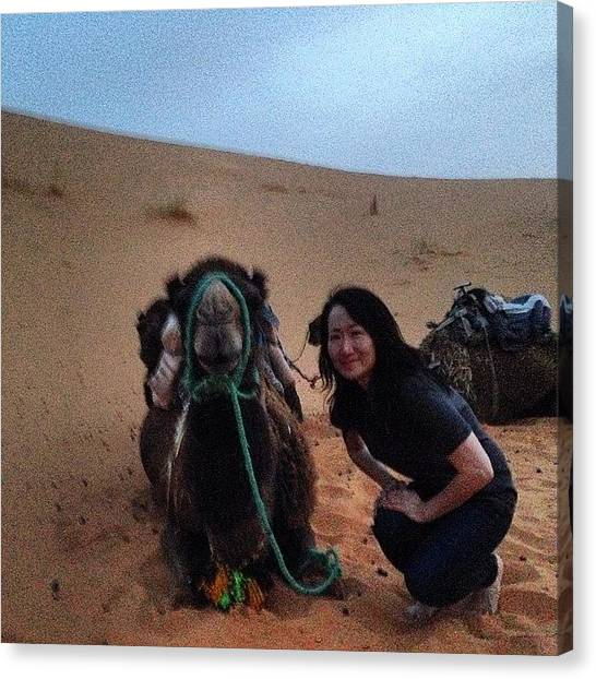 Sahara Desert Canvas Print - Posing With The Camel. I Can't Believe by Blogatrixx
