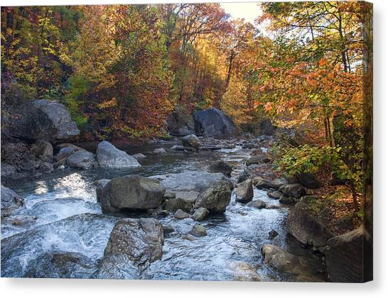 Possum Creek Canvas Print
