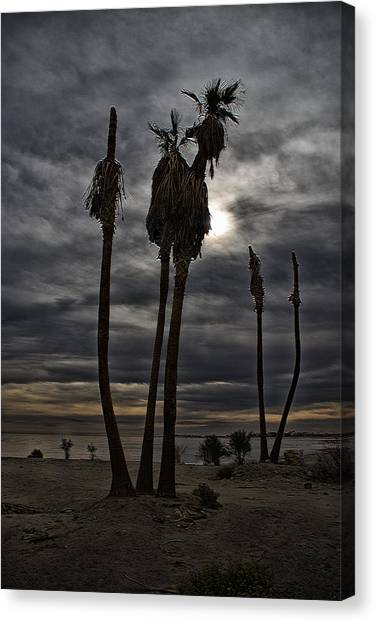 Canvas Print featuring the photograph Postcard From The Apocalypse by Mike Trueblood