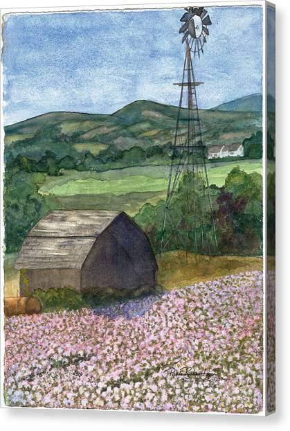 Potato Blossoms Canvas Print