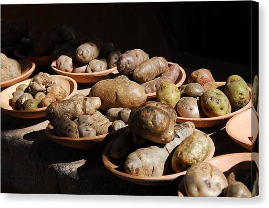 Peruvian Canvas Print - Potatoes by Ivo Kerssemakers