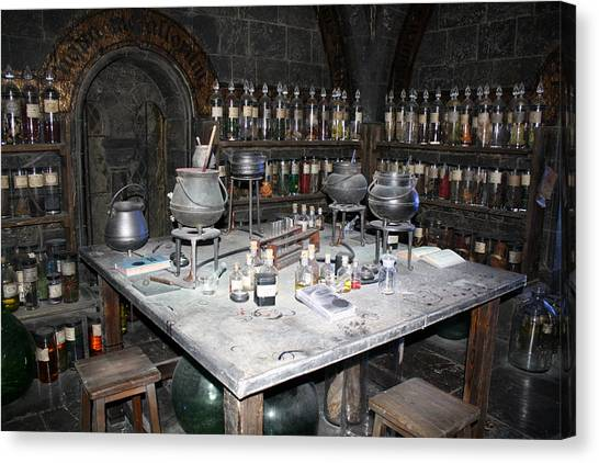 Potions Canvas Print