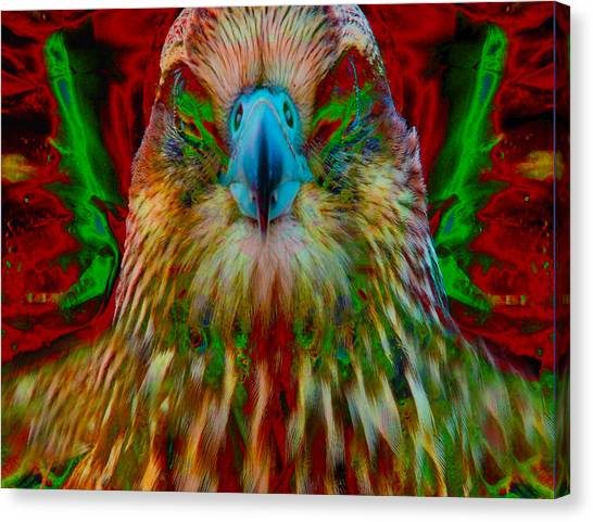 Power Hawk 1 Canvas Print by Colleen Cannon