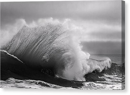 Power In The Wave Bw By Denise Dube Canvas Print
