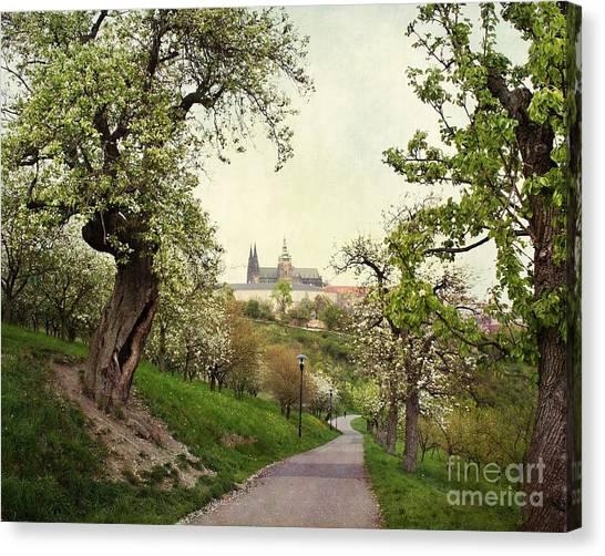 Prague In Bloom I Canvas Print