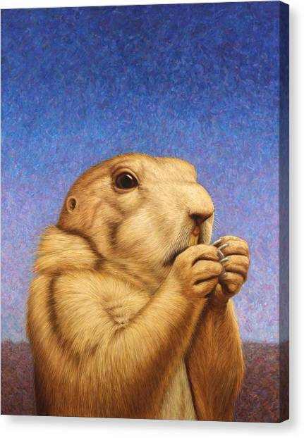 Groundhogs Canvas Print - Prairie Dog by James W Johnson