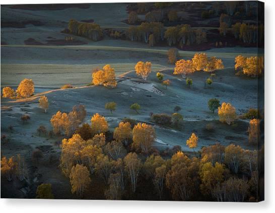 China Canvas Print - Prairie Light by C. Mei