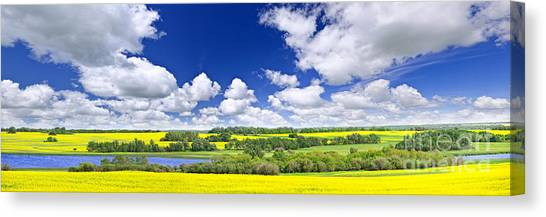 Saskatchewan Canvas Print - Prairie Panorama In Saskatchewan by Elena Elisseeva