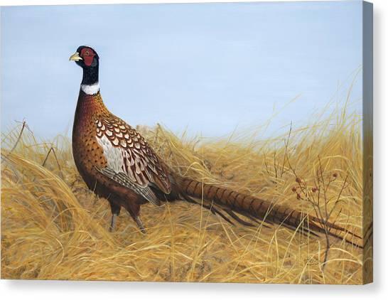 Prairie Splendor Canvas Print