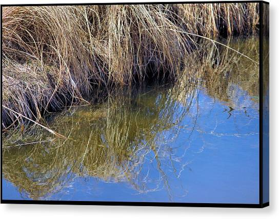 Prairie Stream Canvas Print