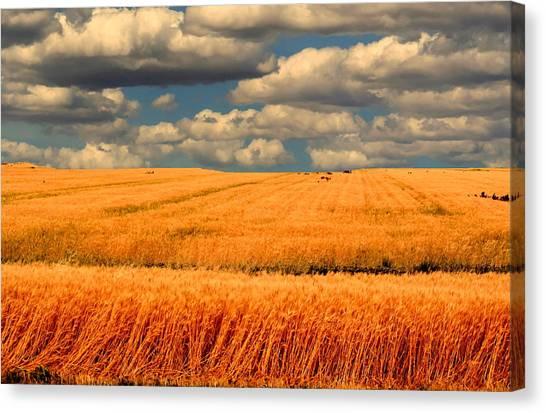 Prairie Vista Canvas Print