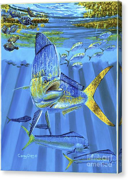 Spearfishing Canvas Print - Predator Off0067 by Carey Chen