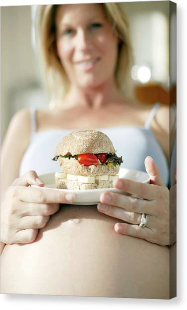 Sandwich Canvas Print - Pregnant Woman Eating by Ian Hooton/science Photo Library