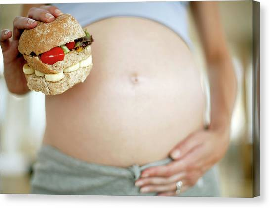 Sandwich Canvas Print - Pregnant Woman With A Sandwich by Ian Hooton/science Photo Library