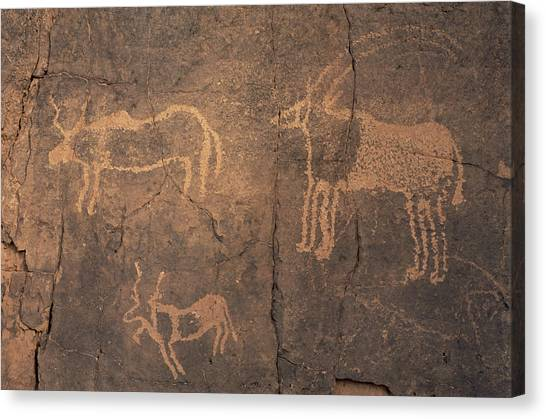 Sahara Desert Canvas Print - Prehistoric Petroglyphs by Sinclair Stammers/science Photo Library