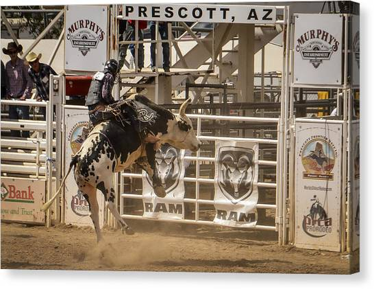 Bull Riding Canvas Print - Prescott Az Rodeo by Jon Berghoff