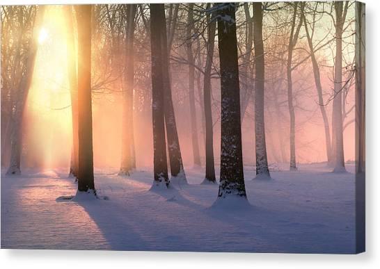 Presence Of Light Canvas Print