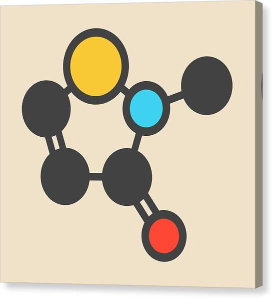 Preservative Molecule Canvas Print by Molekuul