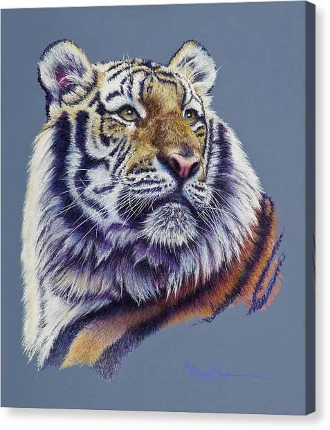 Pretty Boy Siberian Tiger Canvas Print