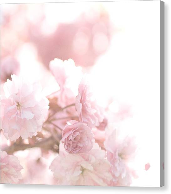 Pretty In Pink - The Confetti Canvas Print