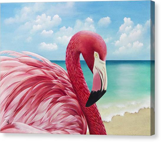 Flamingos Canvas Print - Pretty In Pink by Carolyn Steele
