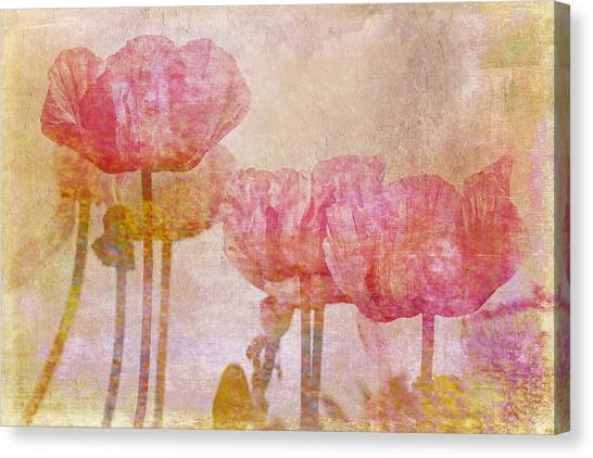 Pretty Poppy Garden Canvas Print